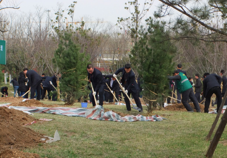 Employees from a Xi'an company planting trees