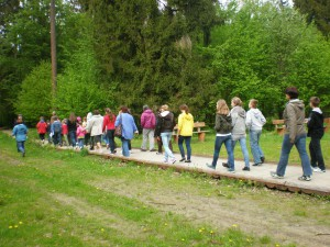 Volunteers and students from Cisie School on a field trip to Białowieża Forest