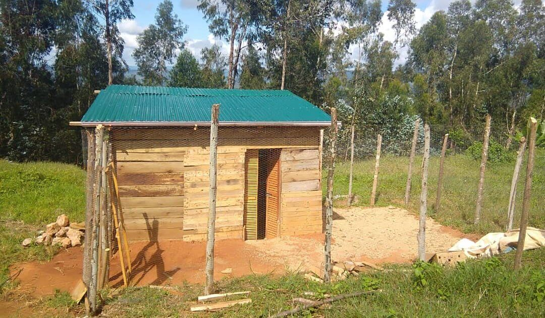 RCP model chicken coop project in Ipalamwa, Tanzania