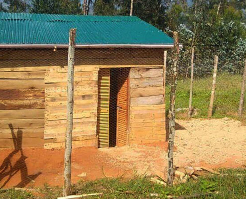The model chicken coop at the RCP Center in Ipalamwa features an enclosed yard for the chickens to exercise.